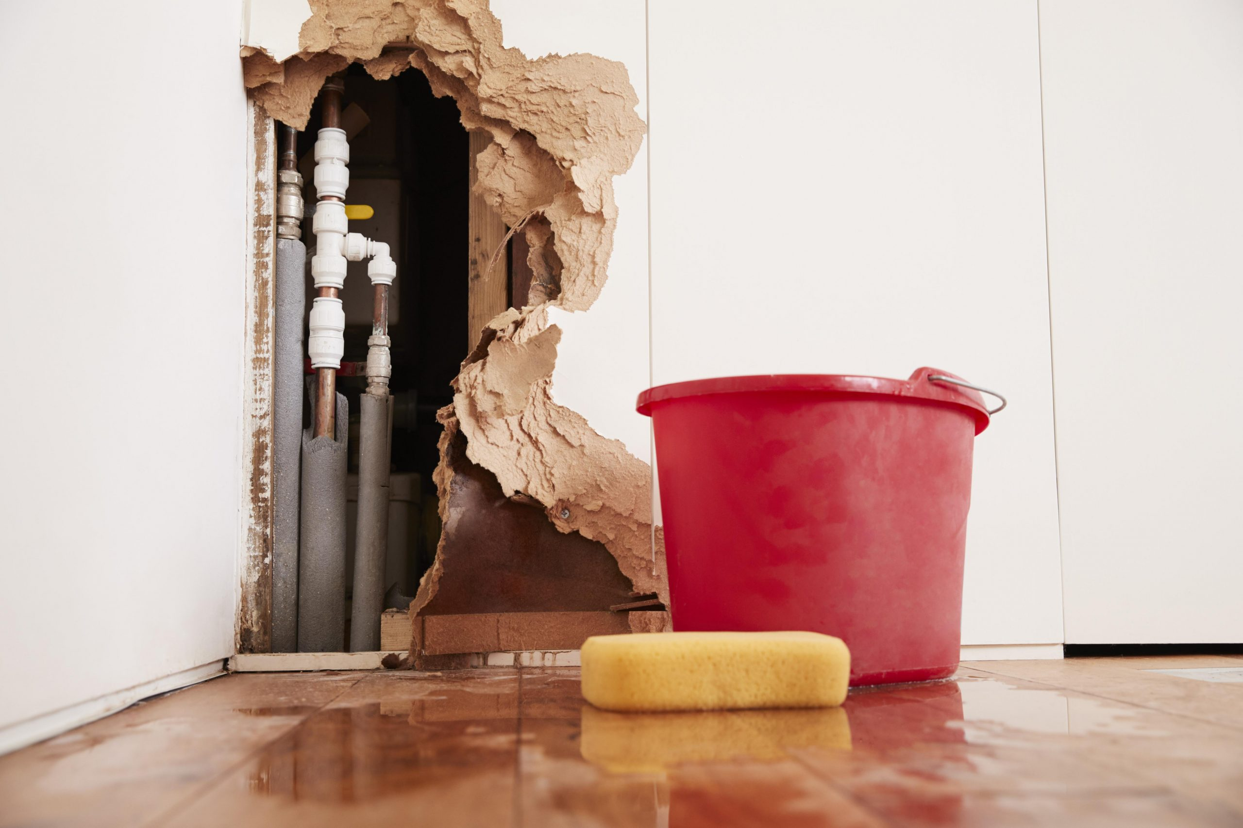 Learn More About Water Damage Restoration JASD Inc scaled
